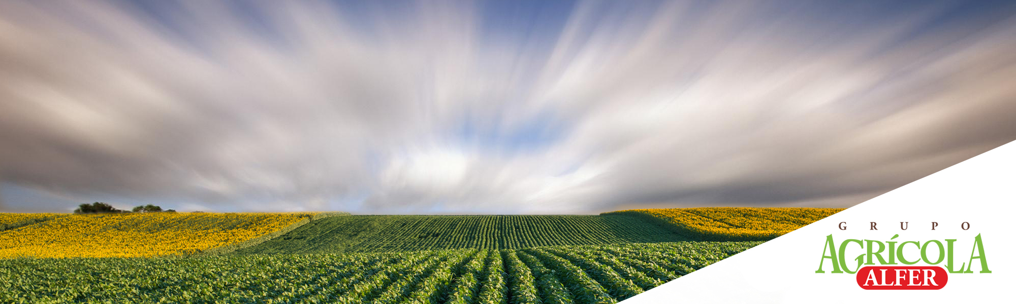 banner_agricola